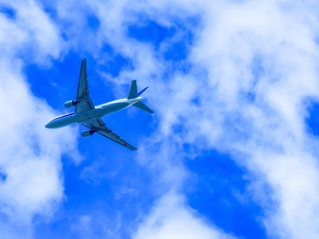 アメックススカイトラベラーカードのマイル制度と航空会社への移行方法を解説!