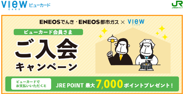 ENEOS viewカード